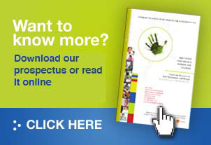 IBDE prospectus- Get online web design today